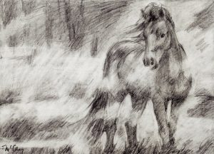 Horse Appears in the Mist