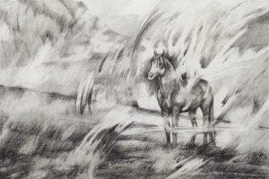 Waiting Spirit Horse